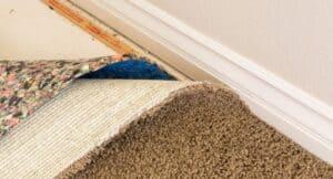 understand-carpet-installation