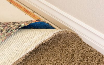 Understand Carpet Installation