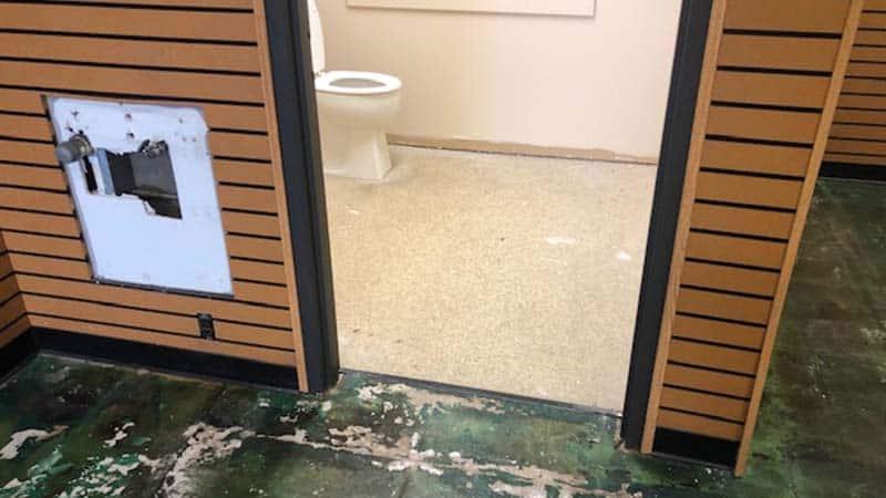 Before-carpet & hardwood floor